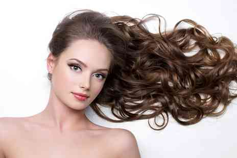 FDL Hair & Beauty - Wash cut blow dry and treatment - Save 50%