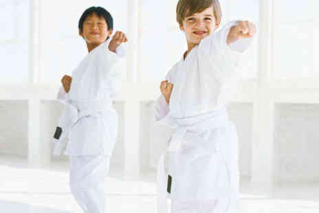 Universal Family Martial Arts - Two Months of Unlimited Martial Arts Classes - Save 66%