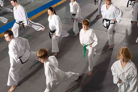 Newcastle Tae Kwon Do - One Month of Tae Kwon Do Sessions - Save 80%