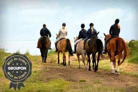 Grange Trekking - Horse Riding Lesson and 60 Minute Trek  - Save 59%