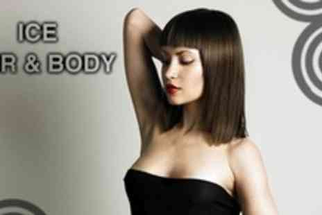 Ice Hair & Body - Haircut With Conditioning Treatment Plus Blow Dry - Save 61%