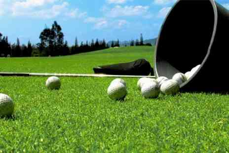 The Golf Centre Epping - Three One Hour Golf Lessons With PGA Professional - Save 76%