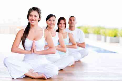 Tai Chi Alliance - Two hour Qi Gong & meditation workshop - Save 57%