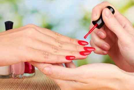 ANB at Ludikriss - Full Day Manicure Course - Save 74%