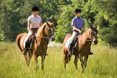 Mill Farm Riding School and Trekking Centre - 90 Minute Horse Riding Woodland Trek For One People - Save 59%