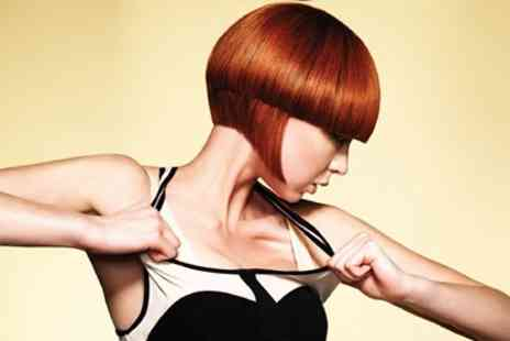 Francesco Group - Restyle Cut and Blow Dry With Condition - Save 71%