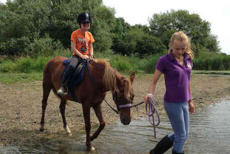 Pony Palace - Hour Long Pony Trekking Experience - Save 53%