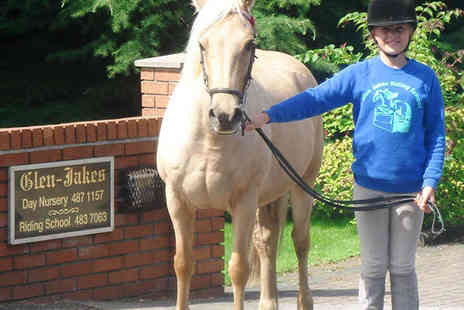 Glen Jakes Riding School - One Hour Group Horse Riding Lesson with Rosette - Save 52%