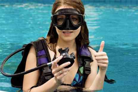 Diving Oasis - Two Hour Scuba Lesson For One - Save 50%