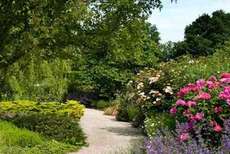 Merriments - Cream Tea For Two With Admission to Merriments Show Garden - Save 50%