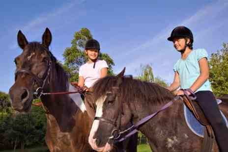 Tullynewbank Stables - Two Lessons For Children - Save 53%