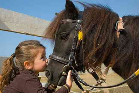 Hooves and Paws - One Horse Riding Camp - Save 51%