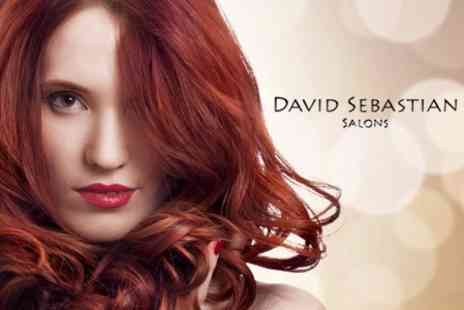 David Sebastian Salons - Full Head of Colour, Plus Wash, Cut & Finish With Conditioning Treatment - Save 65%