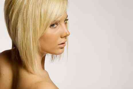 Tara Ladies Hair and Beauty - Full head of highlights plus a wash cut and blow dry - Save 68%