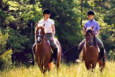Hill Farm Equestrian Centre - Childrens Pony Party - Save 61%