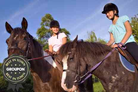 Edinburgh & Lasswade Riding Centre - Riding Lesson or Hack - Save 56%