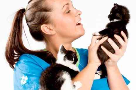 White Cross Vets - Vaccination and Health Check For Dog Cat or Rabbit - Save 58%