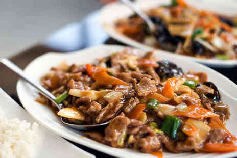 Pagoda Chinese Restaurant - Starter Main Rice and Glass of Wine Each for Two - Save 51%