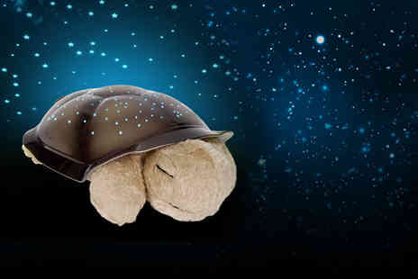 Juggernet.com - Turtle night light star projector - Save 63%