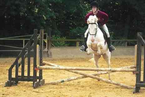 Contessa Riding Centre - One Hour Horse Riding Lesson - Save 50%