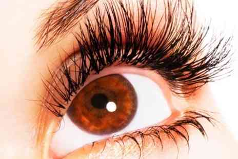 Glamor Hair and Beauty - Individual Eyelash Extensions Plus Eyebrow Wax and Tint - Save 28%
