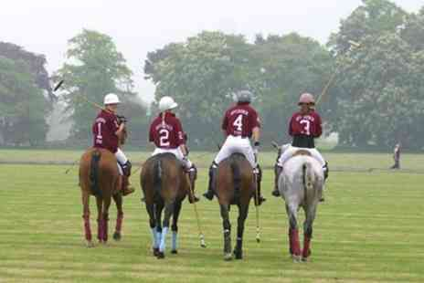 Offchurch Bury Polo Club - One Hour Polo Playing Lesson - Save 60%