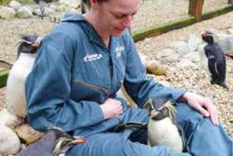ZSL London Zoo - Zoo Keeper for a Day - Save 58%