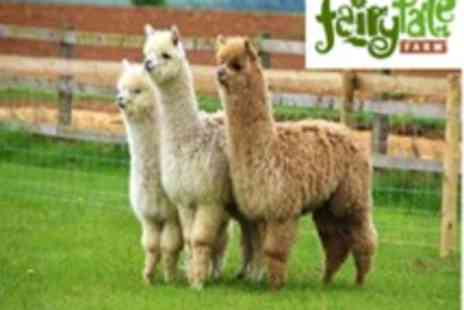 Fairytale Farm - An Annual Family Pass to Fairytale Farm A Sensory & Learning Wonderland For The Entire Family - Save 57%