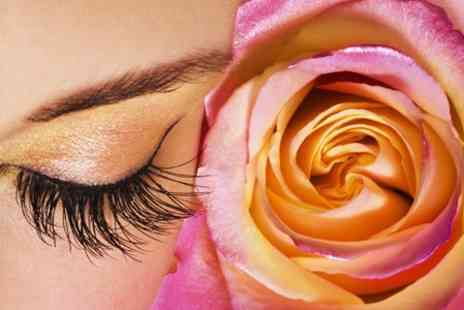 Delucia Holistics - Eyelash Extensions Plus Maintenance - Save 66%