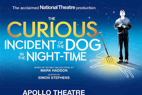 Apollo Digital - Tickets to The Curious Incident of the Dog in the Night Time - Save 50%