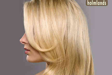 Holmlands - Haircut Blow Dry and Conditioning Treatment - Save 53%