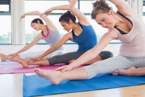 Karina Mills Yoga - Five Beginner or Intermediate Hatha Yoga Classes - Save 51%