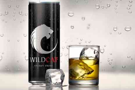 Cosy Dreamz - Wild Cat Energy Drink 24 - Save 57%