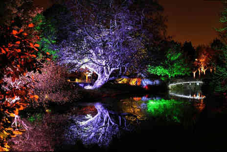 Syon House - Two adult tickets to Syon Parks Enchanted Woodland - Save 50%