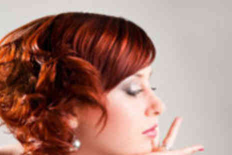 The Hair Studio - Wash cut colour and blow dry - Save 71%