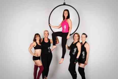 Polenastics Ltd - Pole or Hoop Fitness Classes For One or Two - Save 60%