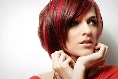 Maggie Style - Colour or Highlights With Cut Plus Conditioning Treatment  - Save 53%