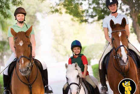 Aldersbrook Riding School - Three Hour Have Your Own Pony Morning - Save 51%