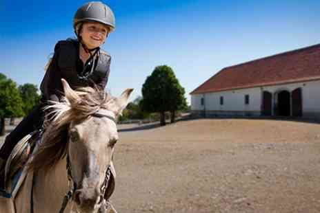 Hill Farm Riding Centre - Horse Riding Lessons  - Save 52%