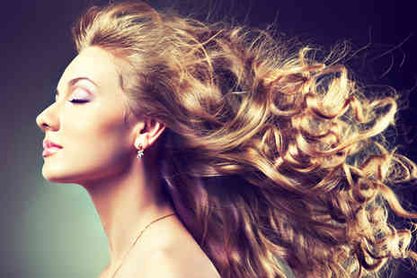 The Parlour Hair Salon - Half head of highlights wash cut blow dry mulled wine & mince pie - Save 65%