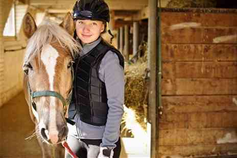 Ruislip Riding School - Own a Pony Experience - Save 66%