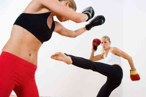 Pyramid Martial Arts - Five Kickboxing Classes or One Month of Fitness Classes  - Save 73%