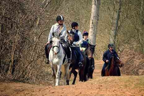 Poplar Park Equestrian Centre - Horse Riding Trek For One - Save 56%
