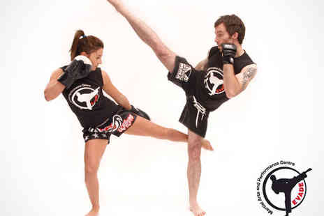 Evade Martial Arts - Five Martial Arts Day Passes with Full Gym Access - Save 76%