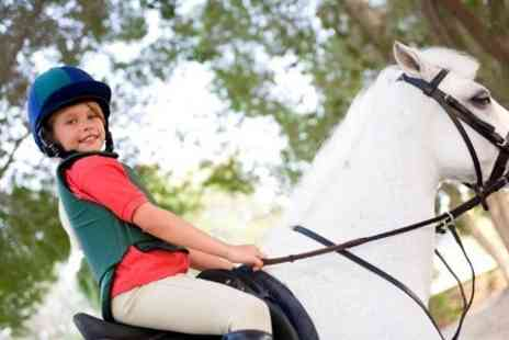 Old Town Riding School - One Hour  Lesson - Save 63%