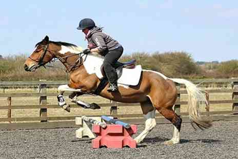Bretforton Equestrian -  Private 45 minute horse riding lesson - Save 56%