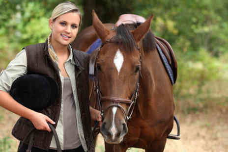 Hundleby Riding Centre - One hour group horse riding lesson - Save 55%