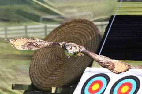 Perriswood Archery and Falconry Centre -  Archery Falconry, Rifle Target Shooting and More For One  - Save 50%
