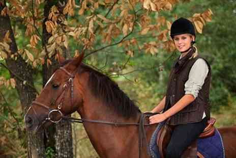 Barnston Riding Centre - Two Lessons Horse Riding  - Save 60%