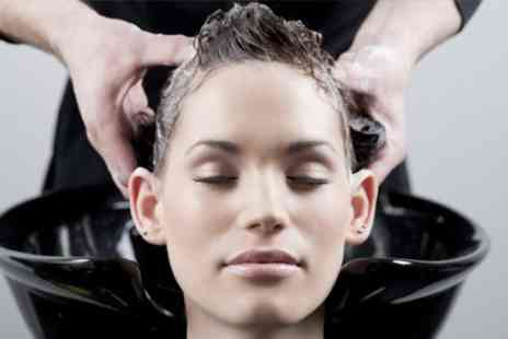 Serenity Hair Spa - Cut and Condition With Colour - Save 64%